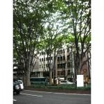 青葉区国分町 貸事務所 10坪 定禅寺通りに面したビル!窓からケヤキ並木が最高です!!